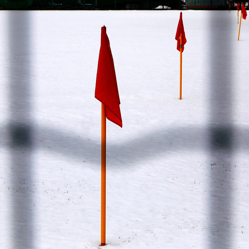 red flags photo
