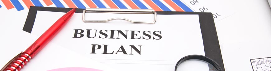 purpose of a business plan