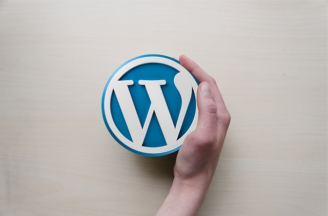 best plugins for new wordpress blog