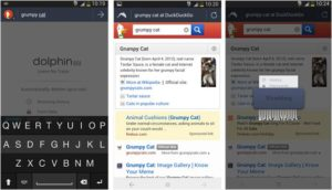 delete your browsing history and ensure privacy on Android