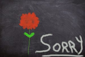 apologize in business